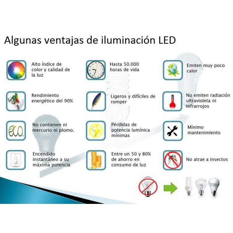 Foco LED 10W Exterior IP65 220v con Sensor Movimiento - Luz Fria 2